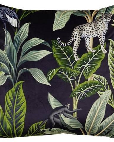 Dekoračný Vankúš Junglelife, 60/60cm, Čierna
