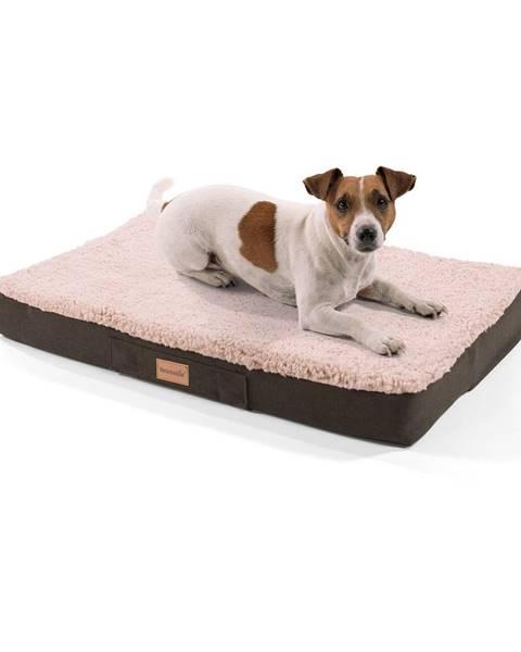 Brunolie Brunolie Balu, pelech pre psa, vankúš pre psa, možnosť prania, ortopedický, protišmykový, priedušná pamäťová pena, veľkosť S (72 × 8 × 50 cm)