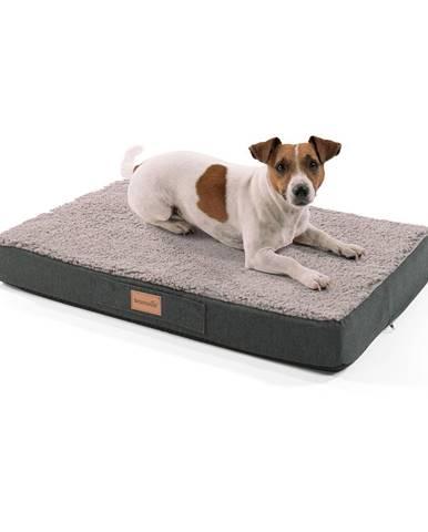 Brunolie Balu, pelech pre psa, vankúš pre psa, možnosť prania, ortopedický, protišmykový, priedušná pamäťová pena, veľkosť S (72 × 8 × 50 cm)