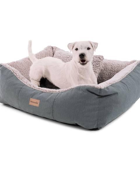 Brunolie Brunolie Emma, pelech pre psa, kôš pre psa, možnosť prania, protišmykový, priedušný, obojstranný matrac, vankúš, veľkosť S (67 × 20 × 59 cm)
