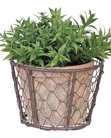 Drôtený kôš s terakotovým kvetináčom Esschert Design