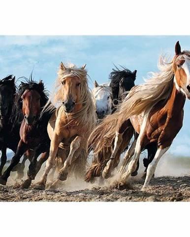 TREFL Cválající koně 1000 dílků