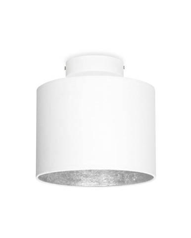 Biele stropné svietidlo s detailom v striebornej farbe Sotto Luce MIKA Elementary XS CP