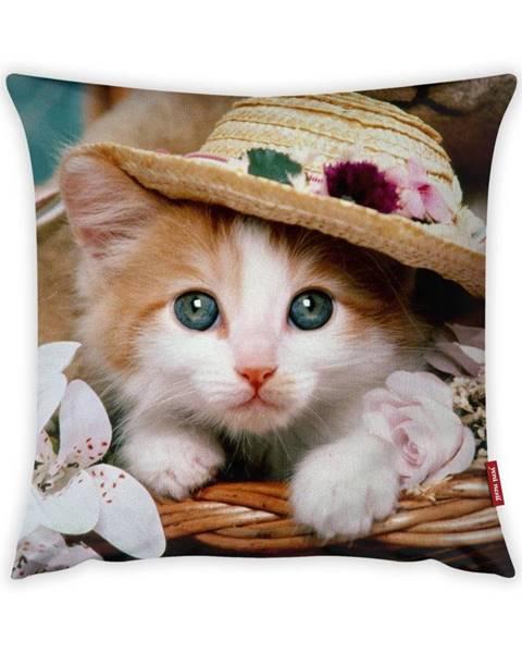 Vitaus Obliečka na vankúš Vitaus Cute Kitten, 43×43 cm